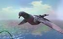 Pigeon - Torley Olmstead