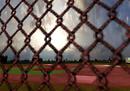 Marney's Field Of Dreams - Week 2 (2)