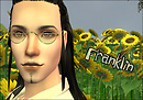 Franklin Sunflower Portrait
