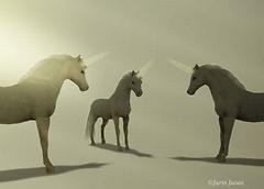 unicorn meeting
