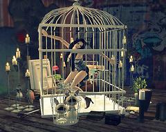 in the captivity