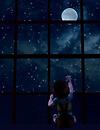 Hello Moon...