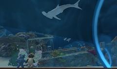 Teddy and I in the aquarium tube - Lorimae Undercroft