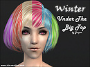 Winter Under the Big Top - Hair