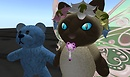 eehehe binky on a cat - Lorimae Undercroft
