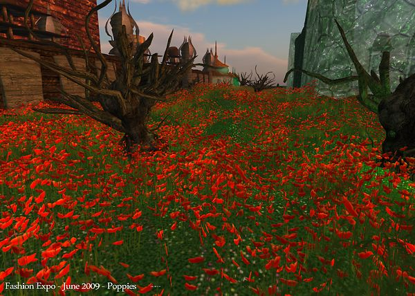Fashion Expo - June 2009 -Poppies