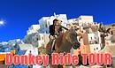 Donkey ride tour
