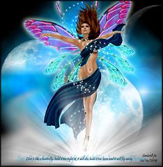 love is like a butterfly