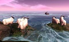 The Great Escape - DeltaDharmaDawn Aubret