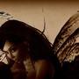 fee wings