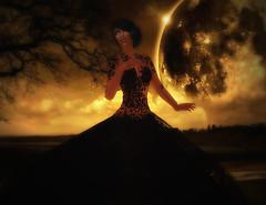 Elissiana  in Phoenix Night