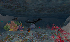 In the Underwater Cave