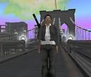 His TP NY Brooklyn Bridge2