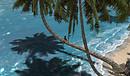 Las Islas  Las Rocas_025
