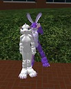 Bunny Playing With Kittie - Draygone Llewellyn