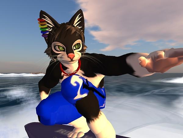 Cat Surf - Socks Clawtooth
