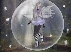 Dancing in a bubble