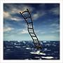 1prim ladder