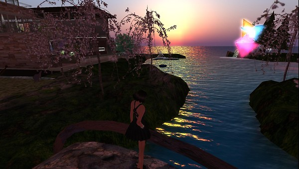 rafee watching the sunset on w...