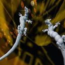 White dragons_009