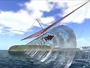 Gliding otter - Socks Clawtooth