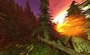 sun, trees, rocks - Torley Olmstead