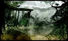 Rikoko's water garden