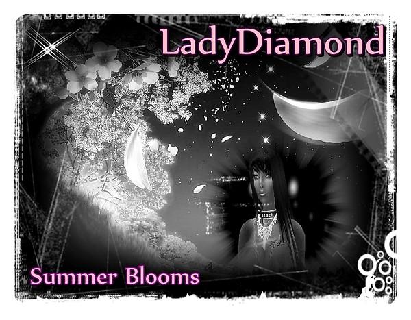 LadyDiamond Summer BloomsLadyD Photo Contest Entry