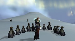 Zulora and penguins :)