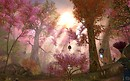 Aion - Sunlight through the trees!