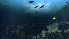 Blue Mars Underwater