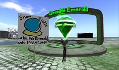 Snowglobe Logo @ Emerald Point