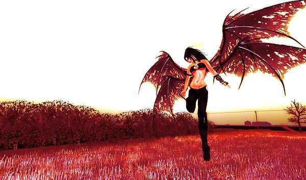 _wings