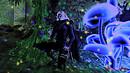 Florest Mystic