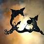 Eve Online: Serpentis stronghold