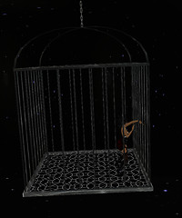 (EOE)Edge's Cage Dance