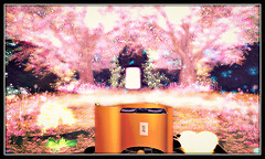 Radiant Bliss Music Project*§*The Garden