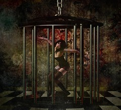 In a cage
