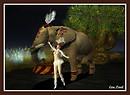 Circus: The Elephant