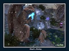 Angel's meeting in Winterfell Amaranthine