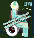 handicap-life in SL copy