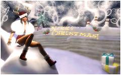 469  Merry Christmas