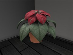 Nice sculpty plant by Tekilah Elytis - Jones Rhapsody