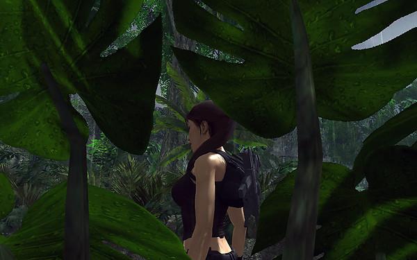 Attention Lara!
