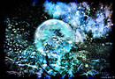 Luna pernox
