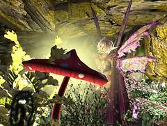 mushroom lighting_001