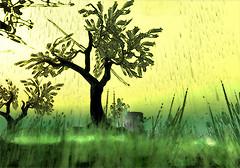 cartoon's tree