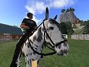 Horse farm - Archie Lukas