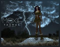 Phaylen For Moxie Polano 2010 - Taurus