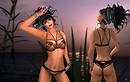 sensuelle new lingerie